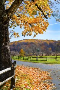 chester county Pennsylvania